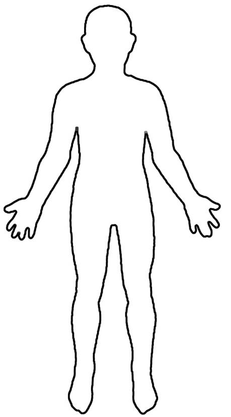 ... Organization & Introduction to the Human Body | FMS 7th Grade Science